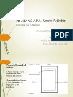 Normas APA 6th edición.