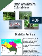 Región Amazonía Colombiana