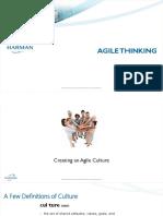 Agile_Thinking Test docs.pdf