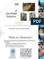 Aflatoxin in Food Products