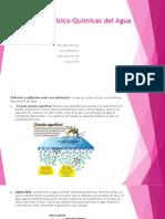 Propiedades Fisico-Quimicas del Agua.pptx