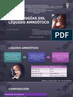 4. Patologias Del Líquido Amniótico