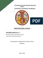 Informe Especial Obstetricia
