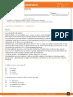 Diagnóstico Lenguaje 7
