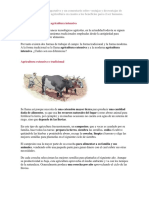 Agricultura extensiva y agricultura intensiva.docx