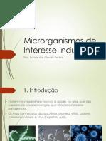 Slide B - Microrganismos de Interesse Industrial - Ago2015.pdf