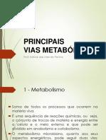 Slide H - Vias metabólicas - Ago2015.pdf