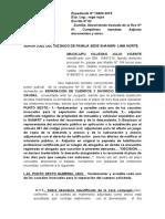 Copia de Julio Vicente- Subsanamos --Se Admita La Demanda