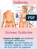 Sistema Endócrino (1)