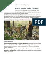 Informacion Sobre Los Tigres Bengala
