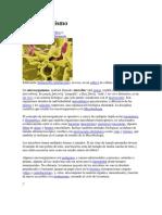Microorganismo 2.docx