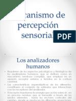 MECANISMOS DE PERCEPCION SENSORIAL