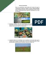Tipos de Ecosistema