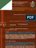 Derecho Procesal Civil. Pruebas