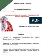 Clase Cardiovascular Síntomas