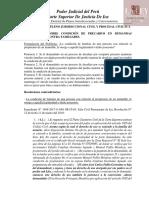 Pleno-Jurisdiccional-Civil-2019-Ica