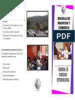 tripticocomerciointernacional.pdf