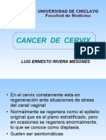cancerdecervixlucho-110902100758-phpapp02