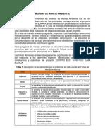 Capitulo IV Plan de Manejo Ambiental