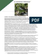 Animales en Peligro de Extinción .Lupita.tarbes