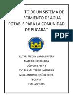 Proyecto Pucara Freddy Vargas