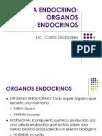Sistema Endocrino UPCH