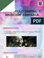 DESARROLLO DENTAL Y ERUPCIÓN DENTARIA 3.pptx