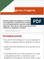 1251262773.ENDOGAMIA Y EXOGAMIA.pdf