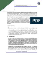 Practicas Arequipa Fermin (1)