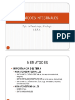 ciclos nematodes.pdf