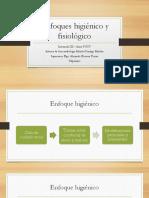 329677105-Enfoques-Higienico-y-Fisiologico.pptx