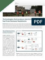 IBSS-Bioenergy-Technology_1508.pdf