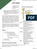Lesión de La Médula Espinal - Wikipedia, La Enciclopedia Libre_2