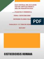 Cisticercosis Humana