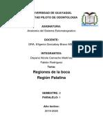 REGIÓN PALATINAAA