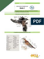 Especialidad de Aves conquis.pdf