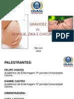 Gravidez x Dengue, zika e chicungunya