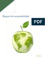 3009120956_Deloitte_ReporteSustentabilidad_2012-13.pdf