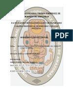 Trabajo de Constitucional PARTE I (1) GRUPO II