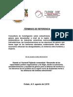 TdR INVESTIGACION Sobre Extractivismo y Relaciones de Genero[1]
