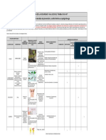 Copia de Formato Matriz Jerarquizacion Evidencia 3