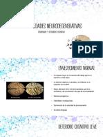 Patologias del neurodesarrollo