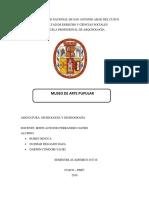 MUSEO DE ARTE POPULAR.docx