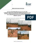 Evaluacion Especies Nativas Pantanal (18 Meses)