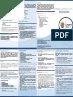 MODELO-DE-PROYECTO-DE-INVESTIGACION-2017.pdf