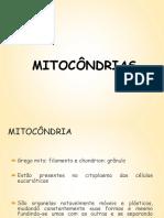 mitocondria.pdf