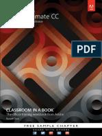 Animate cc in classroom.pdf