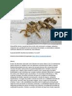 Analisar! - Insectos Coméstiveis JournalClub.docx
