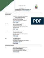 Curriculum Vitae 2.5