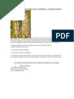 AGENTES DESTRUCTORES DE LA MADERA.docx